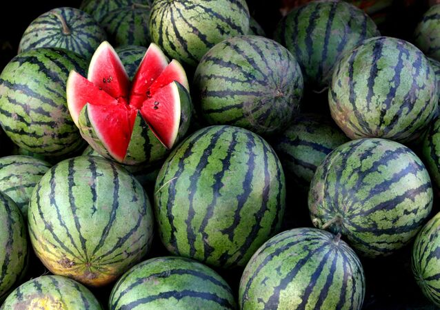 Russia's southwestern Volgograd Region is hosting a traditional watermelon festival on Saturday.