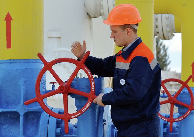 Ukrainian Energy Minister Volodymyr Demchyshyn said that Kiev accepts the commercial terms of the initialled trilateral protocol on the deliveries of Russian gas.