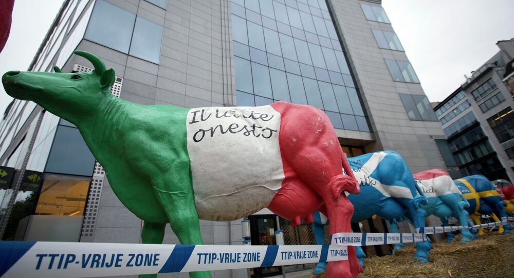 Plastic cows are lined up on hay bales in front of EU headquarters during a farmers demonstration in Brussels on Monday, Sept. 7, 2015.