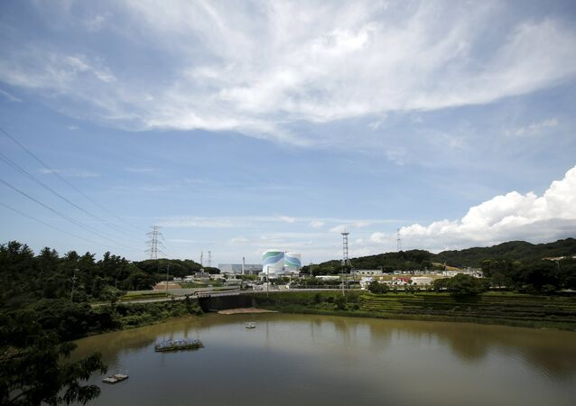 No.1 (L) and No.2 reactor buildings are pictured at Kyushu Electric Power's Sendai nuclear power station in Satsumasendai, Kagoshima prefecture, Japan, July 8, 2015.