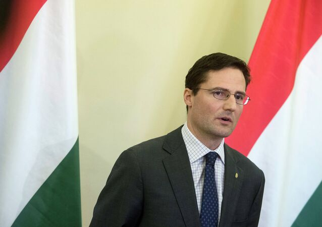 Marton Gyongyosi, member of the Jobbik party and Deputy Chairman of Parliament's Foreign Affairs committee