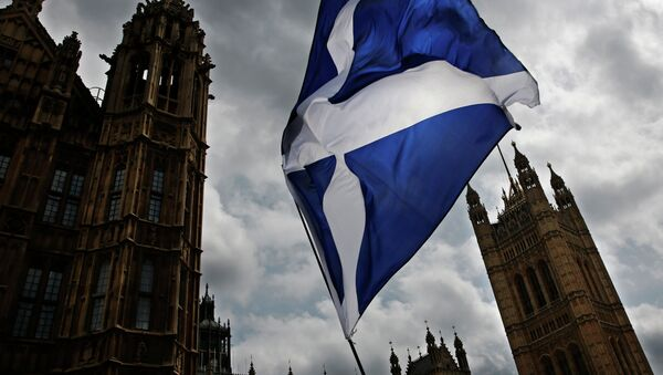 A member of public flies a giant Scottish Saltire flag outside the Houses of Parliament shortly before Scotland First Minister Nicola Sturgeon posed with newly-elected Scottish National Party (SNP) MPs during a photocall in London on May 11, 2015 - Sputnik International