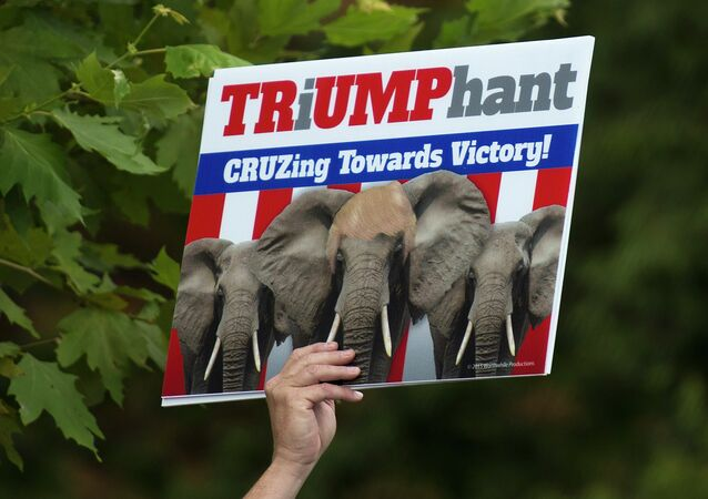 A supporter of US Republican Presidential hopeful Donald Trump