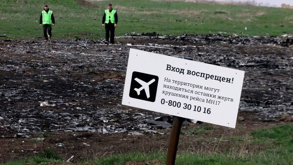A sign on the crash site of the Malaysia Airlines flight MH17 Boeing en route from Amsterdam to Kuala Lumpur - Sputnik International