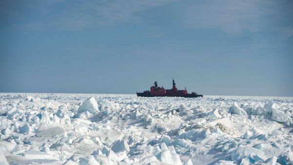 The discovery of nine new islands near Novaya Zemlya in the Arctic has increased Russia's territory by 10 square kilometers, said Igor Naumov, the head of the Russian Navy's hydrographic service, following the result of a Northern Fleet Arctic expedition, Russian newspaper Vzglyad reported. - Sputnik International