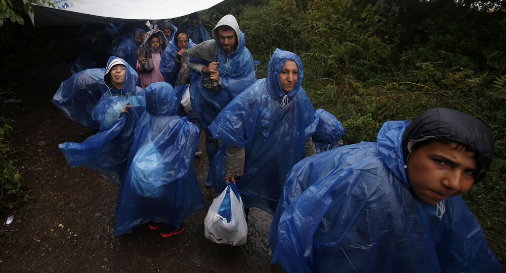 A group of migrants head to cross a border line between Serbia and Croatia, near the village of Berkasovo, about 100 km west from Belgrade, Serbia, Tuesday, Sept. 29, 2015