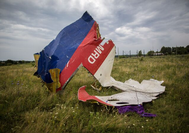 Russia's results of a separate probe into the MH17 crash would be taken into consideration, the Malaysian minister of transport said.