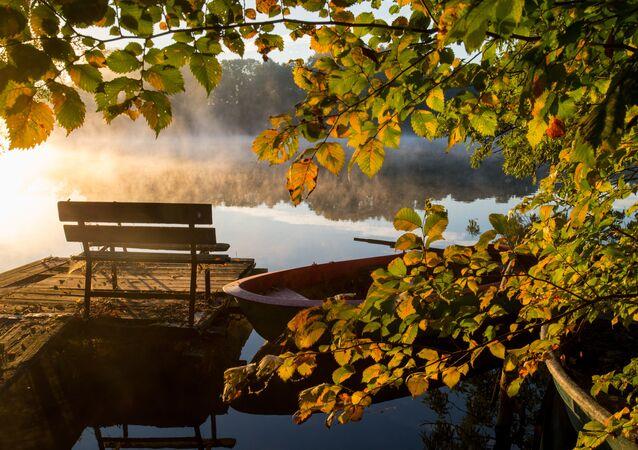 Morning sun shines through the mist