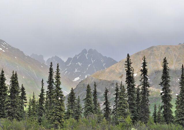 Denali National Park at the Alaska