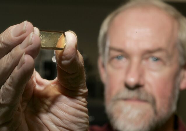 Simon Wilde, a professor at Curtin University of Technology in Perth, Australia, shows off a 4.4 billion-year-old zircon crystal at the University of Wisconsin. File photo