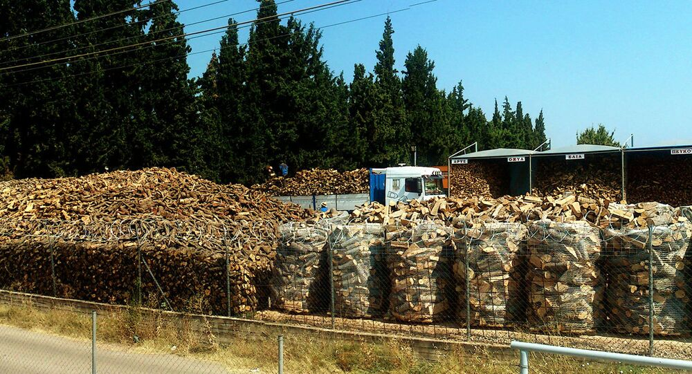 Forestry production. Greece