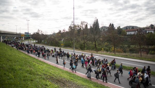 Refugees and migrants walk on a road as they leave Sentilj, Slovenia, on their way to cross the Slovenian-Austrian border on October 23, 2015 - Sputnik International