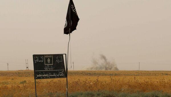 Islamic State  group flag. (File) - Sputnik International