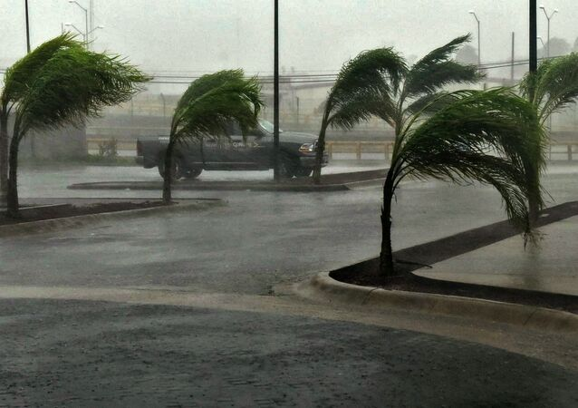 View of a street in Manzanillo, Colima state, Mexico on October 23, 2015, during hurricane Patricia