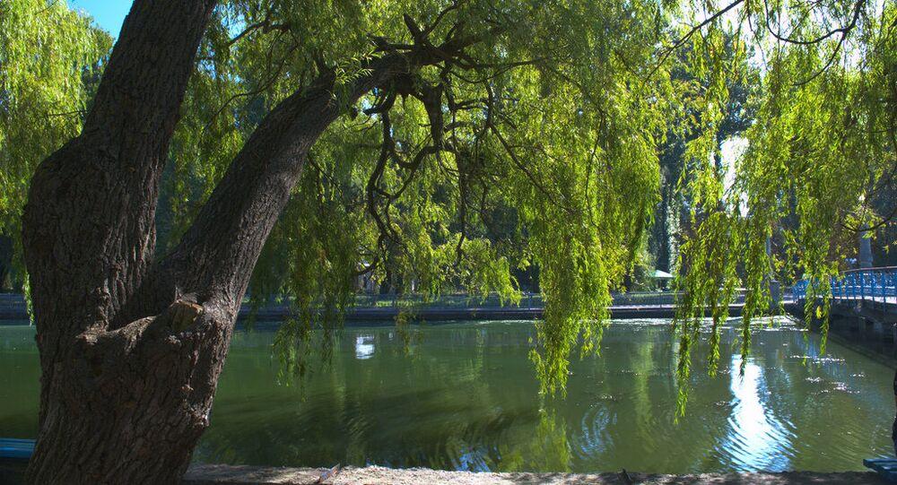 Park in Ternopil, Ukraine