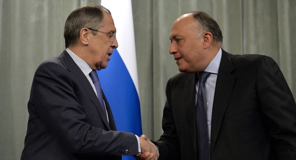 Russia's Foreign Minister Sergei Lavrov (L) shakes hands with his Egyptian counterpart Sameh Shoukry during a press conference following a meeting of a delegation of the ministerial contact group of the Organization of Islamic Cooperation (OIC) on Palestine and East Jerusalem in Moscow on February 26, 2015.