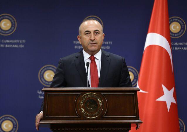 Turkish Former Foreign Minister Mevlut Cavusoglu