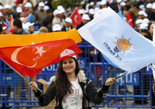 A supporter of the ruling AK Party waves national and party flags during an election rally in Ankara, Turkey, October 31, 2015