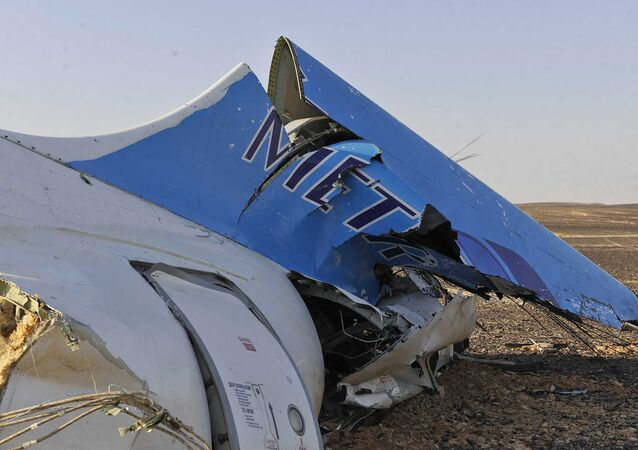 This photo released by the Prime Minister's office shows the tail of a Metrojet plane that crashed in Hassana, Egypt on Saturday, Oct. 31, 2015