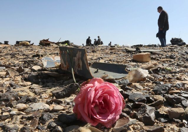A flower is seen near debris at the crash site of a Russian airliner in al-Hasanah area in El Arish city, north Egypt, November 1, 2015.