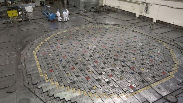 The reactor of the Leningrad nuclear power plant in Sosnovy Bor - Sputnik International