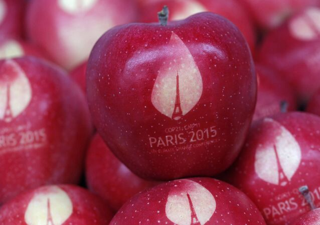 Apples marked with the logo of the World Climate Change Conference 2015 (COP21) are seen in this illustration picture at the Laquenexy Fruit Gardens, near Metz, eastern France, November 3, 2015
