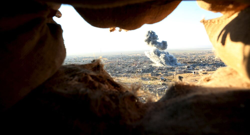 Smoke rises from the site of U.S.-led air strikes in the town of Sinjar, November 12, 2015.
