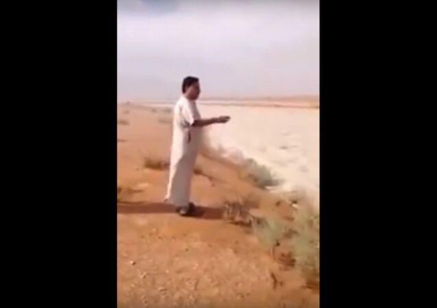 Weird natural phenomenon in Saudi Arabia's Empty Quarter desert