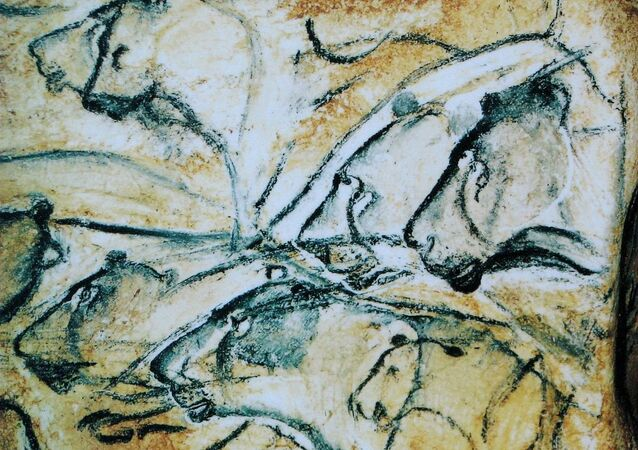 Lions painted in the Chauvet Cave.