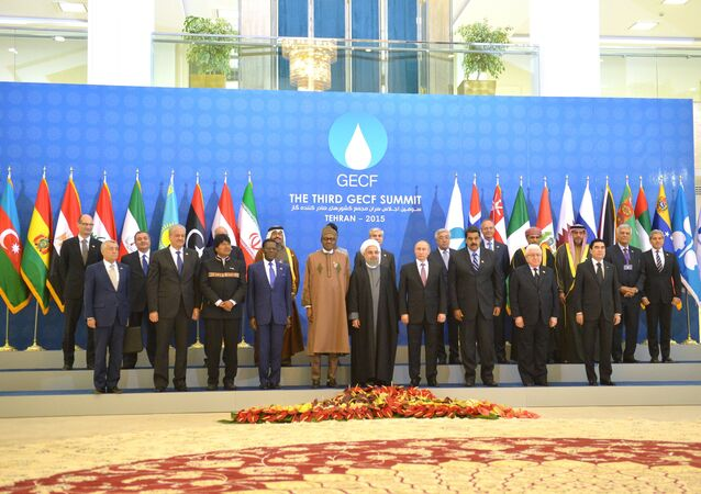 Russian President Vladimir Putin, fourth right, first row, during a photo session before the summit of the Gas Exporting Countries Forum in Tehran. November 23, 2015