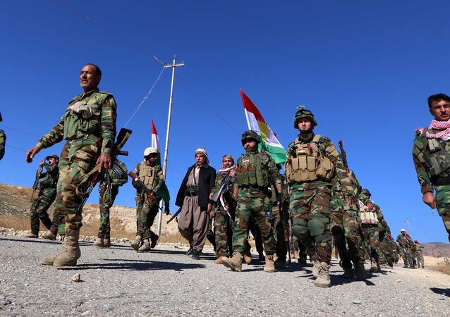 An Amnesty International report that accused Peshmerga forces of deliberately destroying Arab communities in areas under their control is a lie, Helgurt Hikmet, a spokesperson for the Ministry of Pershmerga in Iraqi Kurdistan, told Sputnik in an exclusive interview.