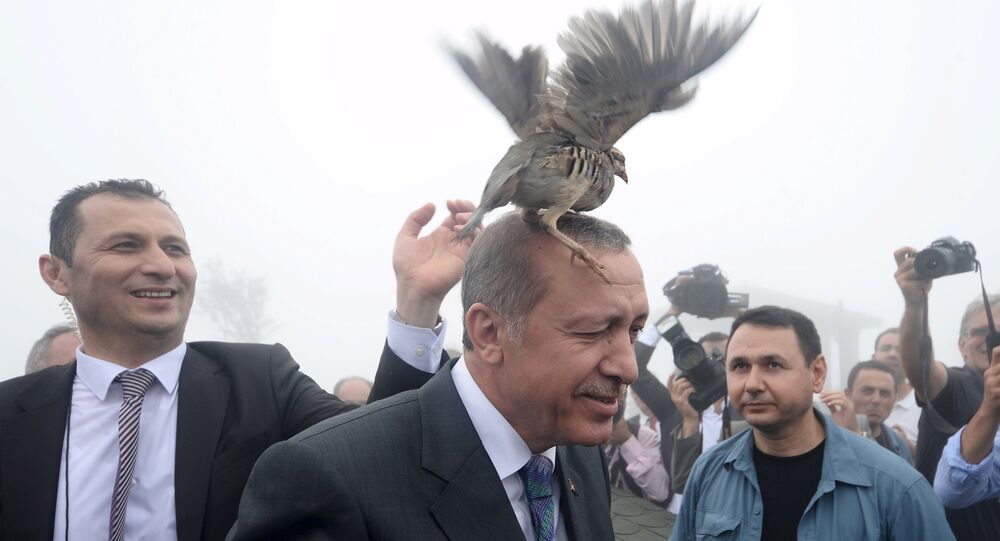 Turkish President Tayyip Erdogan, accused by critics of an increasingly authoritarian style of government, has argued that the country would be better served by a strong presidential system