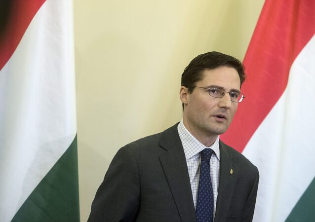 Marton Gyongyosi, member of the Jobbik party and Deputy Chairman of Parliament's Foreign Affairs committee.