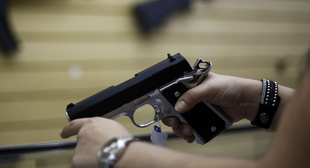 Following the Paris terrorist attacks, Germans suddenly began stocking up on weapons possibly in an attempt to protect themselves, the German newspaper Die Welt reported.