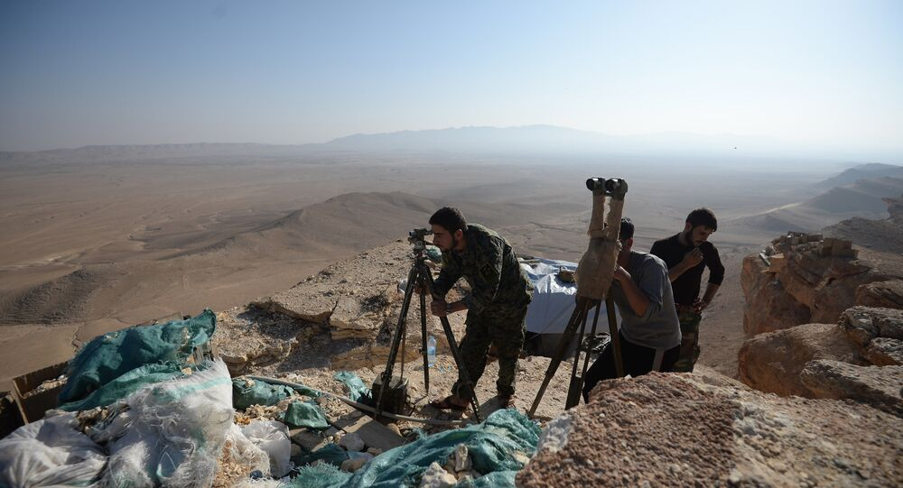 Syrian army's positions near Palmyra
