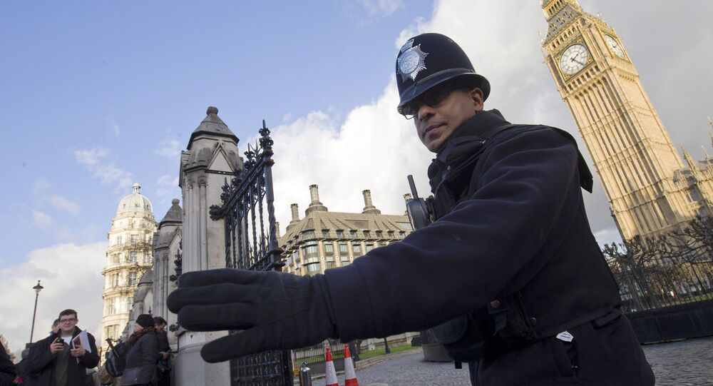 A police officer controls traffic outside the Houses of Parliament in central London on November 25, 2015.