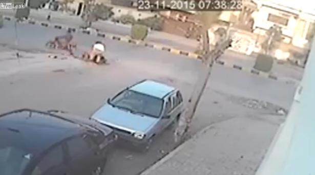 Car mirror thief gets instant justice