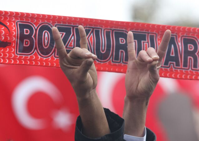 Supporters of the Nationalist Movement Party make gestures symbolising the Grey Wolves, the extremist youth organisation of the party, in Ankara on 13 December 2009 during a brotherhood rally in reaction to a decision by a court on 11 December 2009 to disband the Kurdish Democratic Society Party (DTP)