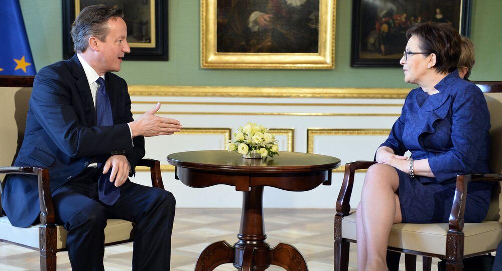 British Prime Minister David Cameron (L) talks with his Polish counterpart Ewa Kopacz in Lazienki palace in Warsaw on May 29, 2015.
