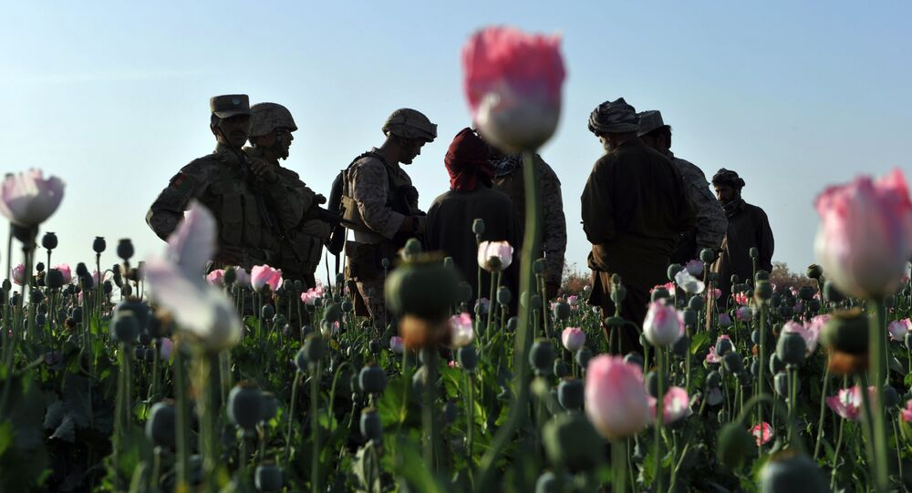 Rudy Ayala (2nd L) Law Enforcement Professional embeded with the Marine corps questions opium poppy farmers at Maranjan village in Helmand province on April 25, 2011 as US Marines from Border Adviser Team (BAT) and Explosive Ordance Disposal 1st and 2nd Marine Division (Forward) and Afghanistan National Police take patrol in the area