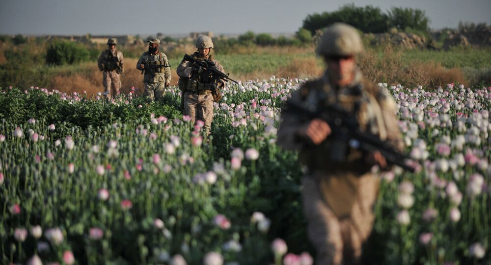 US Marines and Gunnary Sergeant Nate Cosby (R), Staff Sergeant Josh Lacey (2nd R) and Navy Hospitalman 2 Daniel Holmberg (L) from Border Adviser Team (BAT) and Explosive Ordance Disposal (EOD) 1st and 2nd Marine Division (Forward) walk through opium poppy field at Maranjan village in Helmand province on April 25, 2011 as they take patrol with their team and Afghanistan National Police.