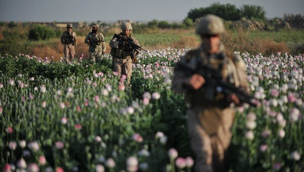 US Marines and Gunnary Sergeant Nate Cosby (R), Staff Sergeant Josh Lacey (2nd R) and Navy Hospitalman 2 Daniel Holmberg (L) from Border Adviser Team (BAT) and Explosive Ordance Disposal (EOD) 1st and 2nd Marine Division (Forward) walk through opium poppy field at Maranjan village in Helmand province on April 25, 2011 as they take patrol with their team and Afghanistan National Police. - Sputnik International
