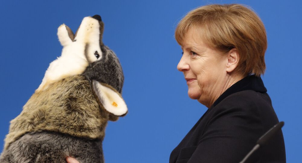 German Chancellor Angela Merkel holds a toy wolf she got as a present during a party convention of the Christian Democrats (CDU) in Karlsruhe, Germany, Monday, Dec. 14, 2015.