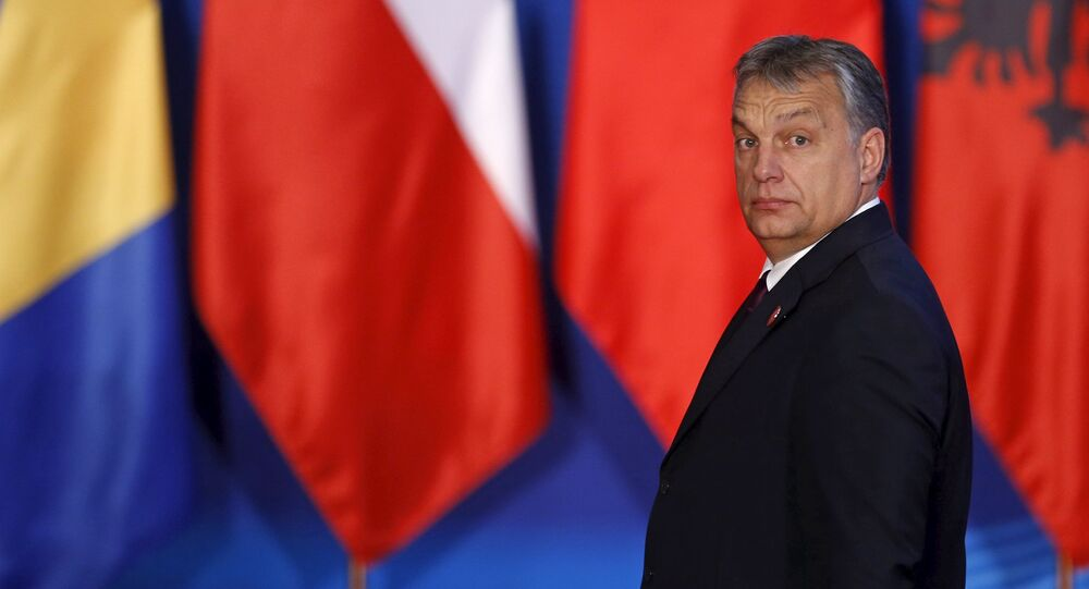 Hungary's Prime Minister Viktor Orban attends the 4th Meeting of Heads of Government of China and Central and Eastern European Countries, in Suzhou, Jiangsu province, China, November 24, 2015.