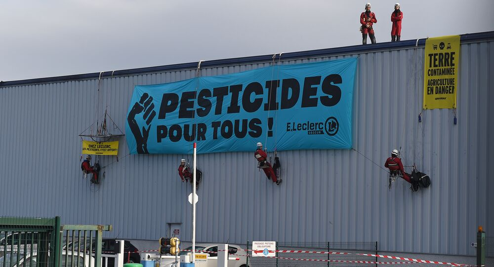 Greenpeace protestor hang protest banners reading 'Leclerc, Pesticides, It's Offered!', 'Pesticides for all!' and 'Earth contaminated, agriculture in danger' from a Leclerc supply depot in Tournefeuille, near Toulouse, on October 27, 2015