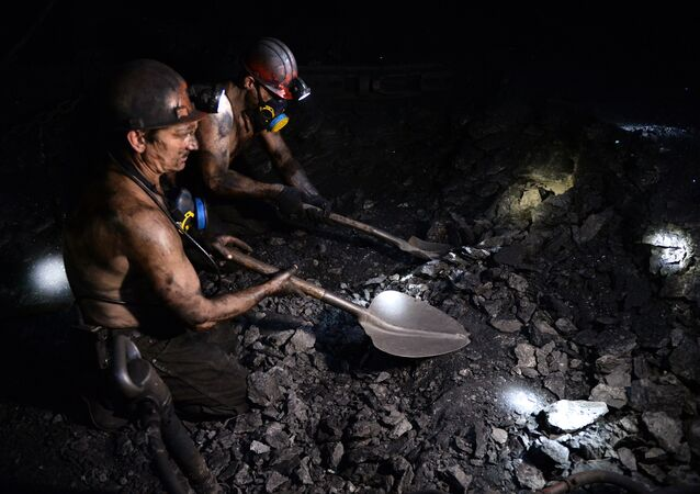 A miner works at the Kalinovskaya-Vostochnaya coal mine in the eastern Ukrainian city of Makeevka near Donetsk