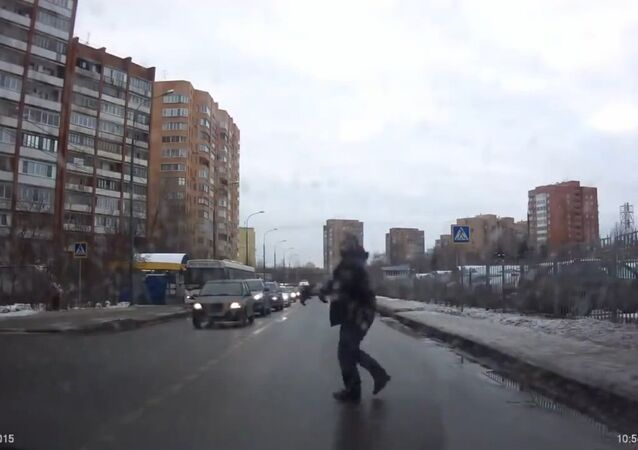 Good Russian man helped the dog to move her puppy across the street