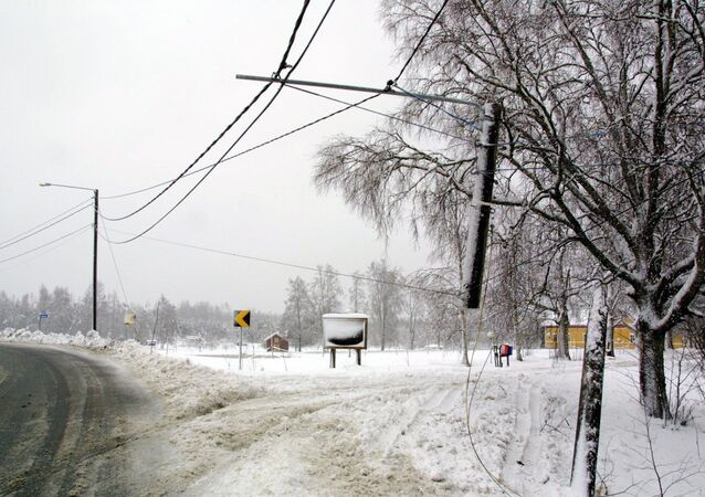 Leaning pylons and loose power cables after a heavy snowstorm hit central Finland (File)