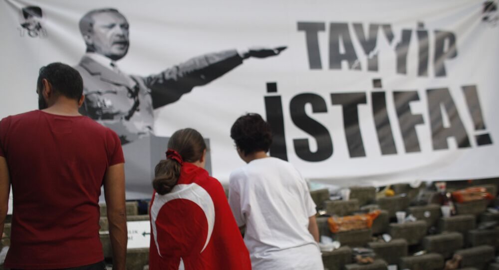 A young protester wearing a Turkish flag stands in front of a banner featuring Turkish Prime Minister Recep Tayyip Erdogan as Adolf Hitler in Gezi park near Taksim square in Istanbul, Friday, June 7, 2013