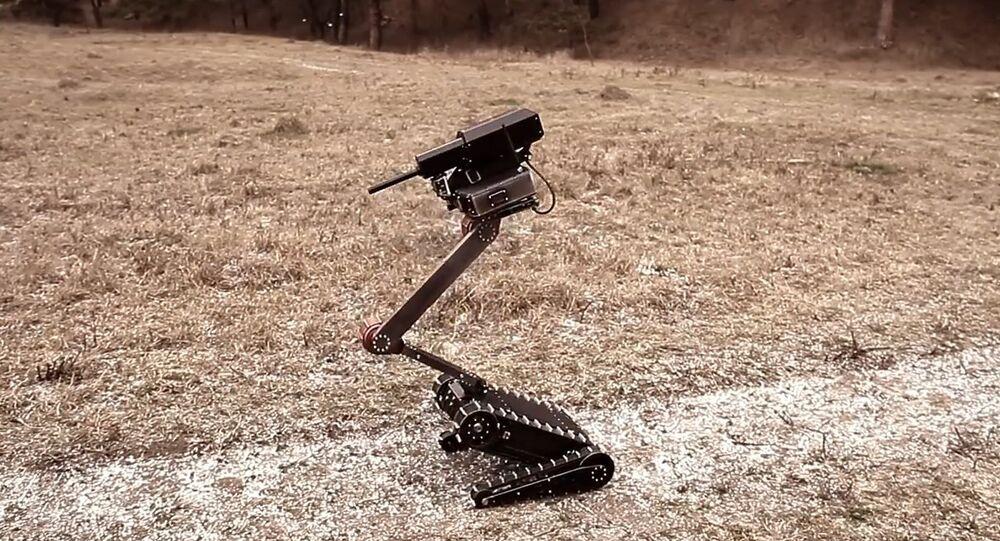 Lobaev Tactical Robot Minirex RS1A3